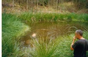© irene waters 2013 Grace swimming