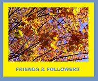 friends-followers-award-1