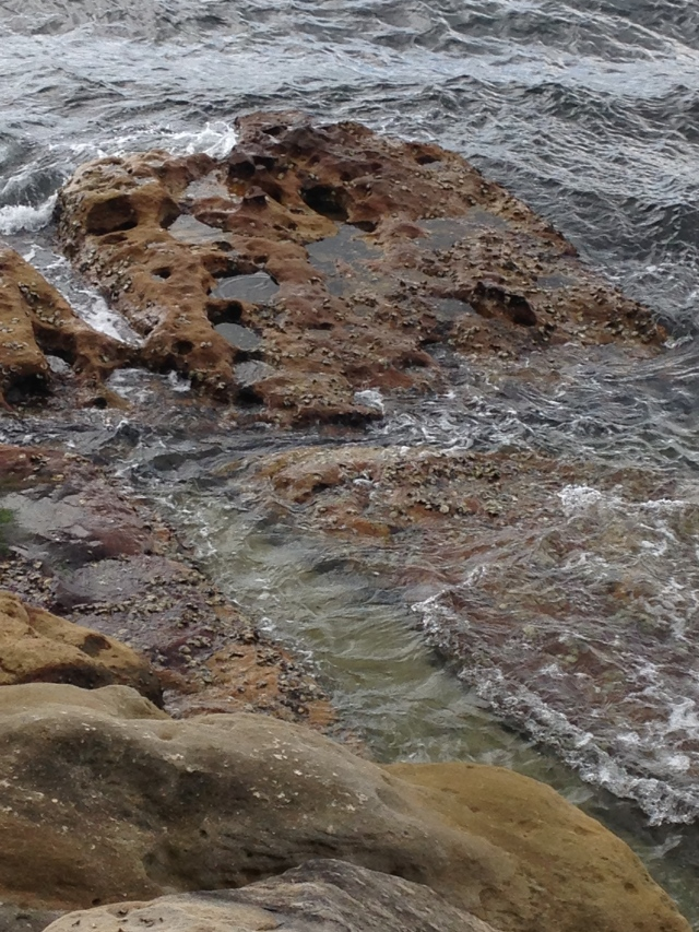 ©irene waters 2015