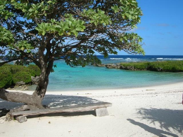 Vanuatu September 06.jpeg0251