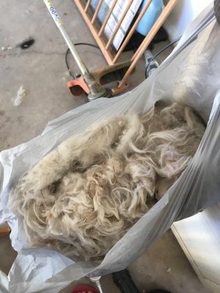 bag of hair ©irene waters 2017