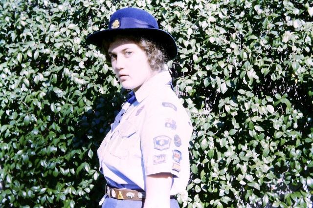 1973.3 Irene guide badges